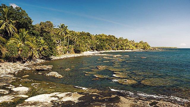 <p>A beach scene in the Philippines.</p>