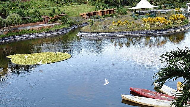 <p>Garin Farm, Miagao, province of Iloilo City, Philippines.<br></p>