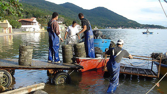 Sustainable aquaculture systems careers