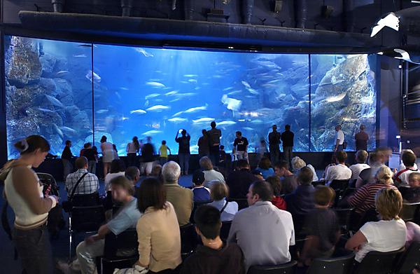 National Marine Aquarium interior