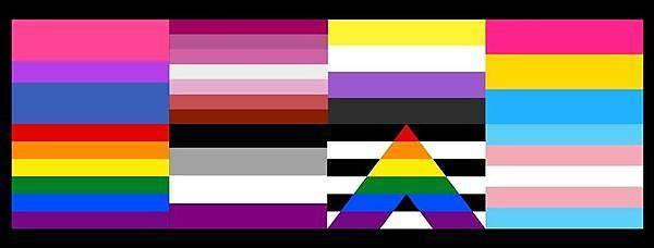 <p>Gay, lesbian, trans, pan, bi, ally and non binary flags&nbsp;</p>