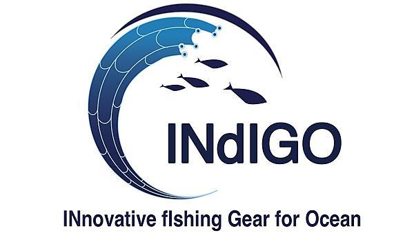 <p>INdiGO logo</p>