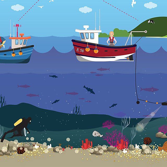 <p>  Ambitious conservation requires a holistic approach that encompasses all aspects of the marine ecosystem (Credit Lauren Porter, University of Plymouth)  <br></p>