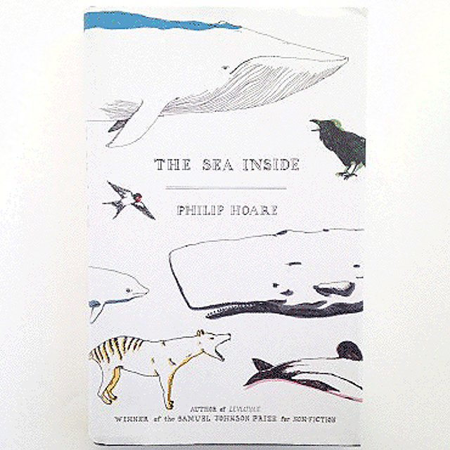 <p>Sea inside by Joe Lyward</p>