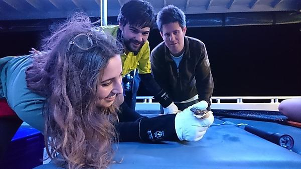 Dr Bruno Simoes (right) with students examining a snake during foraging in Western Australia