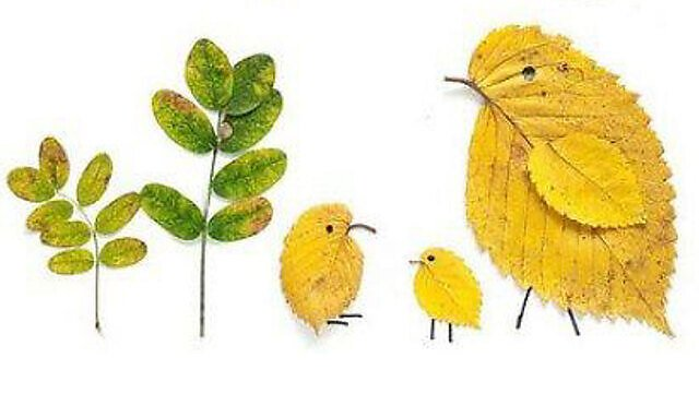 <p>Leaf art</p>