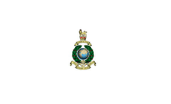 <p>RMSoM logo</p>