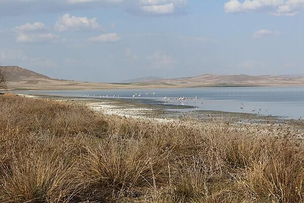 Water security in the agricultural landscapes of Turkey
