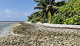 Coral reef island dynamics, Maldives