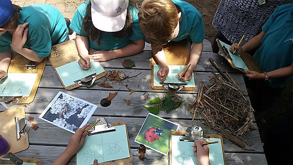Developing a nature and outdoor learning rich curriculum