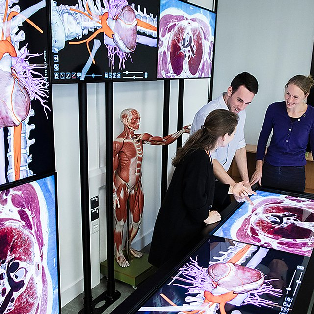 <p>Life Sciences Resource Centre Anatomage virtual dissection table<br></p>