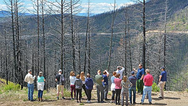 students in front of burnt forest, image courtesy of Jamie Quinn