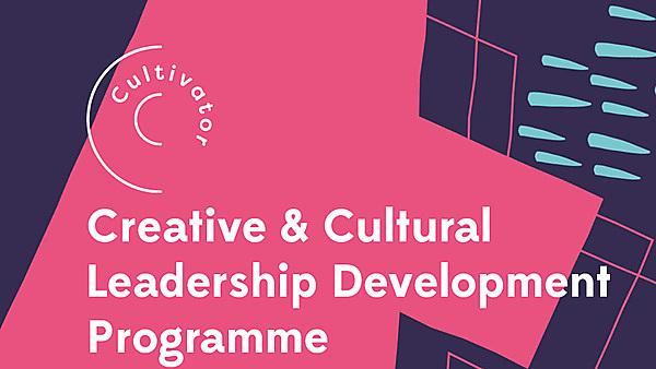 Creative and Cultural Leadership Development Programme (CCLDP)