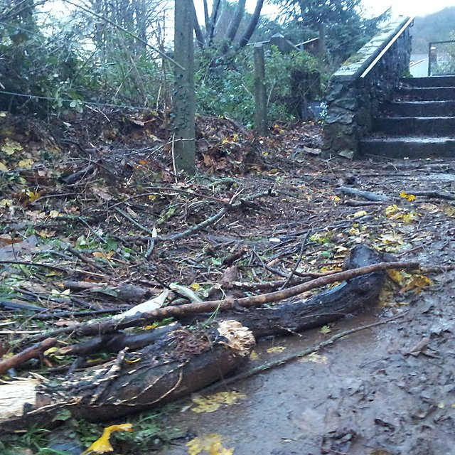 <p>  River Dart flooding (Credit: Buckfastleigh Flood Action Group)   <br></p>