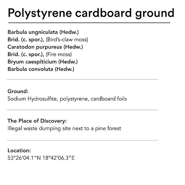 <p>  Diana Lelonek&nbsp; polystyrene ground text<br></p>