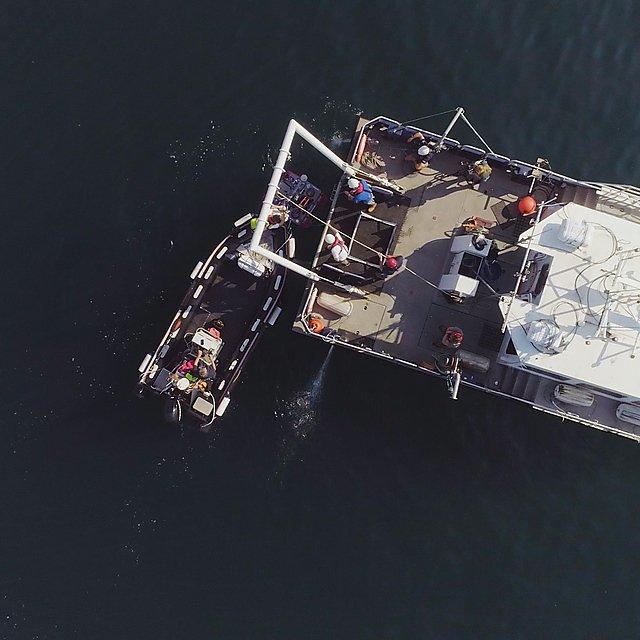 <p>  CETUS survey work with HydroSurv  <br></p>