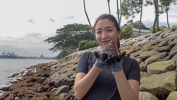 Tiffany Chai