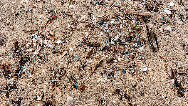 <p>Microplastics and marine litter pollution on a beach</p>