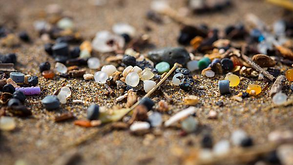 Are microplastics a big problem?