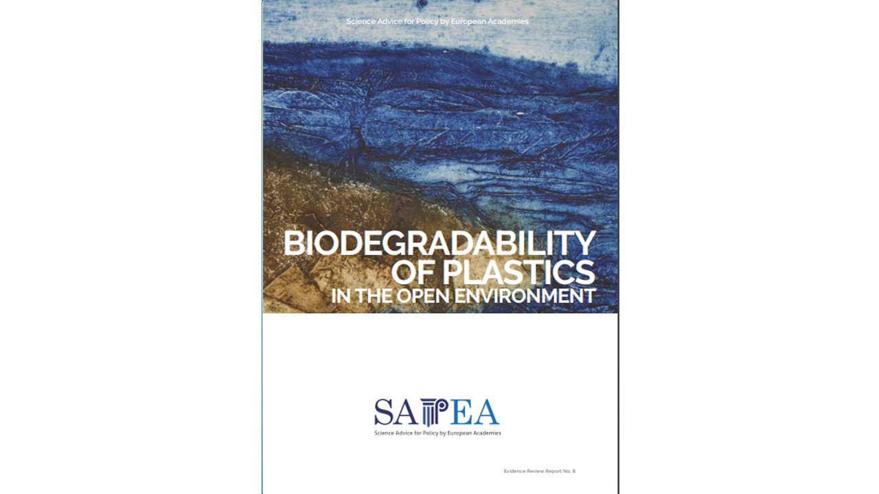 Biodegradability of plastics in the open environment (2020)