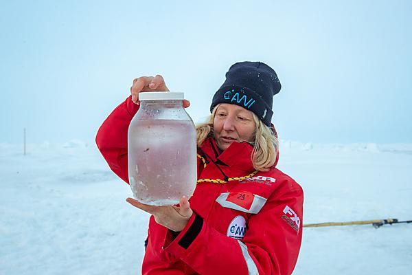 Katrin inspecting a plankton catch (Credit: Lianna Nixon)