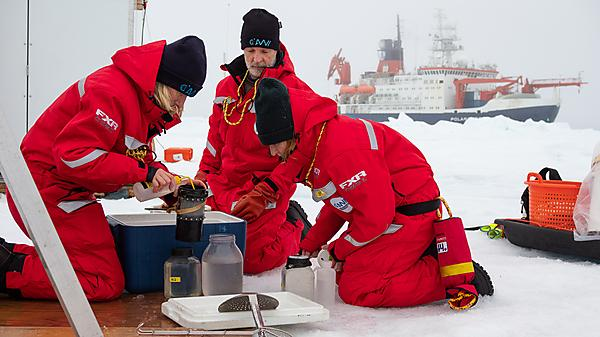 Katrin and colleagues with a zooplankton catch on the ice (Credit: Jan Rohde)
