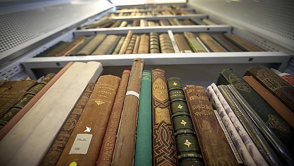 Seale Hayne Library