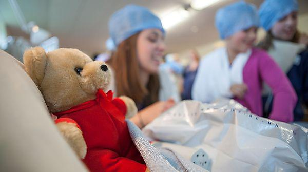 Children's University Teddy Bear Hospital Workshop