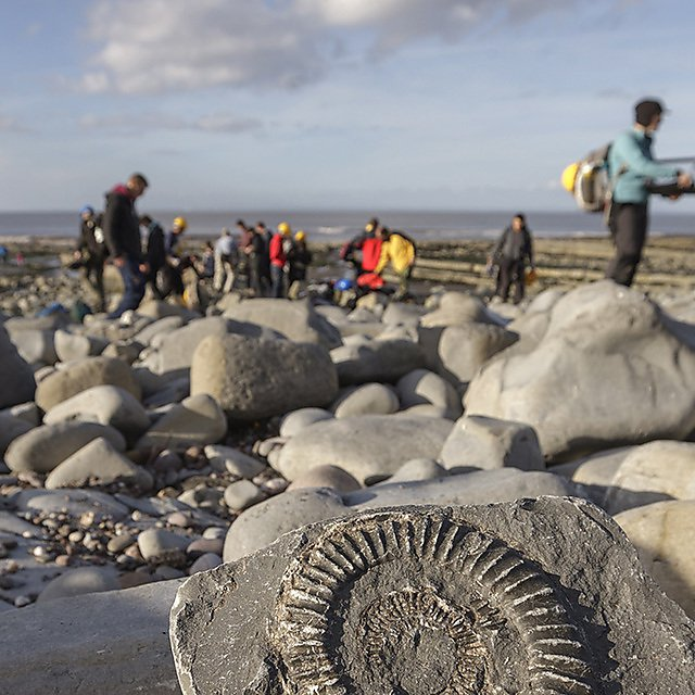 Earth Sciences Geology Students on fieldtrip to Kilve on the north Somerset Coast.