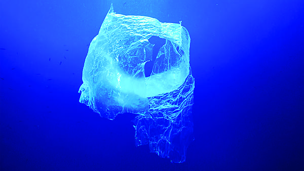 Pollution problem - plastic bag in the ocean. Image courtesy of Shutterstock