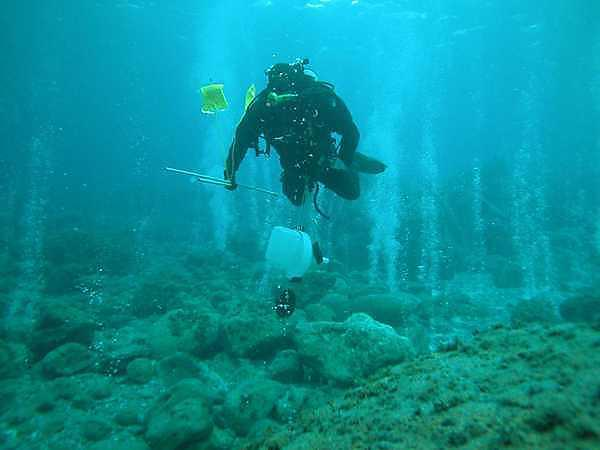Carbon dioxide seeps in the ocean