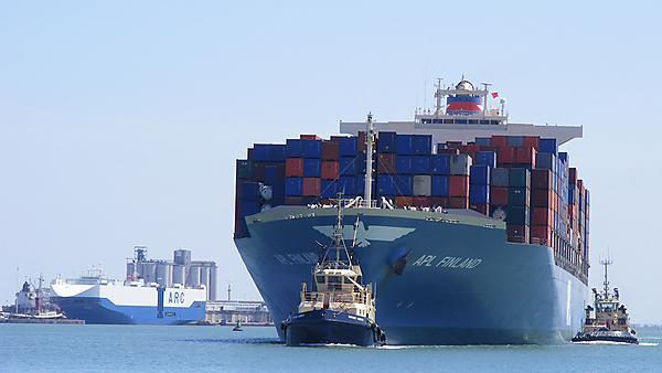 Michael Everard Shipping