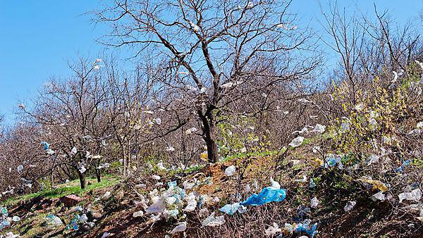 Plastic bags over the countryside