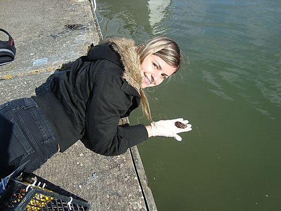 Marcela Uliano da Silva collecting Mussels in Dartmouth