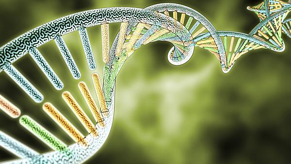 colorized DNA model on Green Biological styled background, 3D rendering with Depth of Field (DoF) courtesy of Shutterstock, copyright Yang Nan