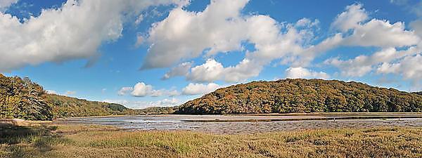 SEDiLINK estuary