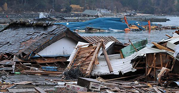Japanese guidelines could assist other tsunami prone nations