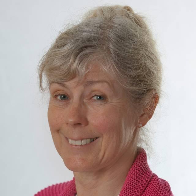 Prof Anne de Looy