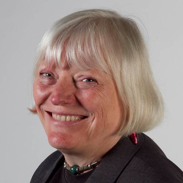 Professor Liz Wells