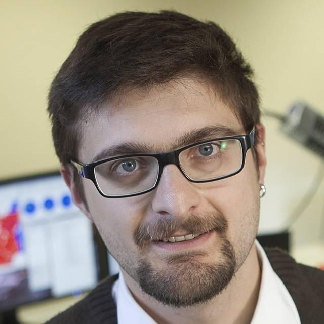 Dr Luca Menegon