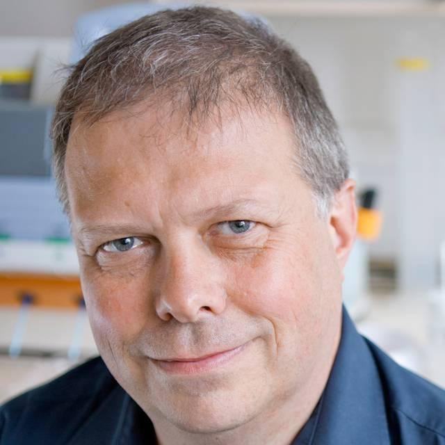 Professor Neil Avent