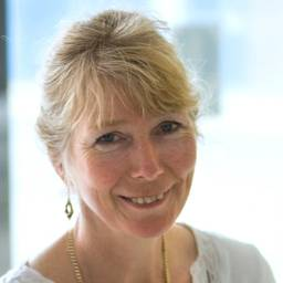 Penelope Welbourne Associate Professor in Social Work