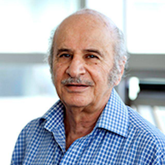 Professor Waleed Al-Murrani