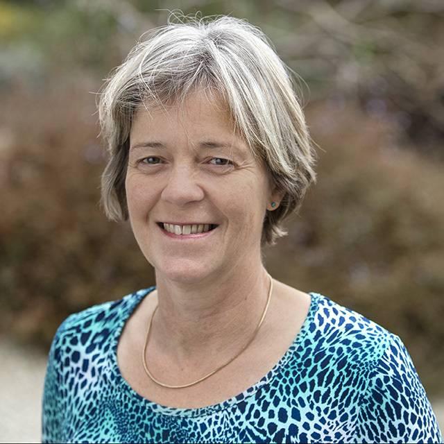 Dr Alison Jeffery