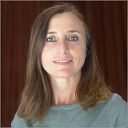 Dr Aude Gébelin Lecturer in Tectonics