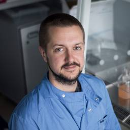 Dr Lee Hutt Senior Technician (Molecular Biology and Tissue Culture)