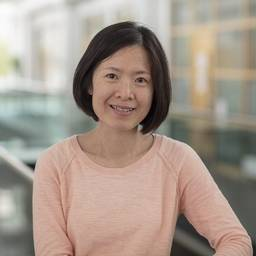 Dr Wai Ling Kok Research Fellow in Stem Cell & Cancer Biology